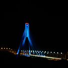 Boyne River Bridge by Martina Fagan