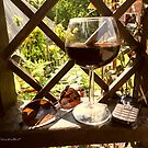Red wine in the evening. by alaskaman53