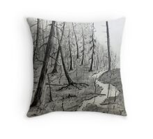 Outlet by the Cedars Throw Pillow