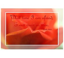 What Time I Am Afraid I Will Trust In Thee Photographic Print