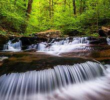 Cascades at Rickett's Glen.  by AppalachianViews Photography