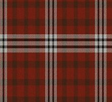02633 Forsyth County, North Carolina E-fficial Fashion Tartan Fabric Print Iphone Case by Detnecs2013