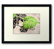 ©GS About Shadows II Framed Print