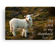 Lord Is My Shepherd Psalm 23 Canvas Print