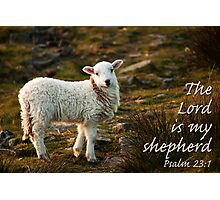 Lord Is My Shepherd Psalm 23 Photographic Print