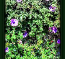 ©GS-DA Floral Wall Paintography by OmarHernandez