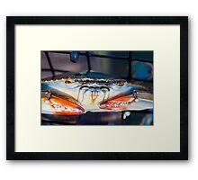 Crab... Framed Print