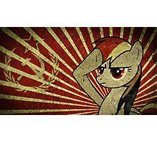 Pony communist Photographic Print