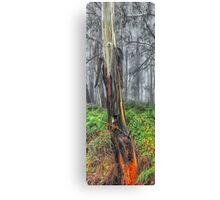 Strength - Laurel Hill NSW - The HDR Experience Canvas Print