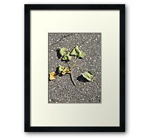Brotherhood Of Leaves Framed Print