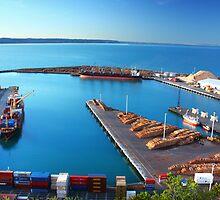 Napier Port, NZ by SeeOneSoul