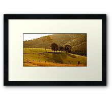 Trees overlooking lovely field Framed Print