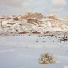 Split Mountain Winter Light by Kim Barton