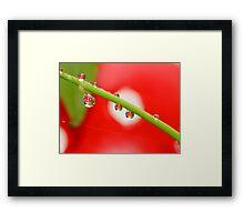 H20 Macro - Strawberry Drops Framed Print
