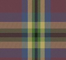 02642 Dundhuin Dress Tartan Fabric Print Iphone Case by Detnecs2013