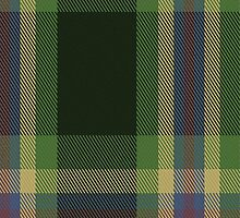 02644 Dundhuin Hunting Tartan Fabric Print Iphone Case by Detnecs2013