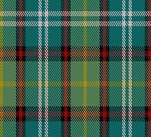 02648 Dunedin (NZ) District Tartan Fabric Print Iphone Case by Detnecs2013