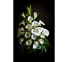 White Lilies Photographic Print