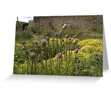 CHIVES AND MARJORAM - SECRET WALLED HERB GARDEN Greeting Card