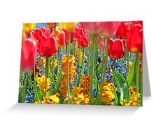 Intensity of tulips Greeting Card