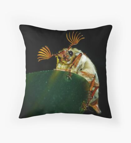 Who's the cutest of them all? Throw Pillow