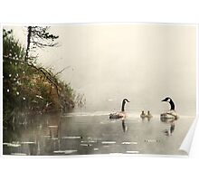 8.6.2013: Birds on the Swamp Pond Poster