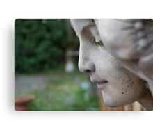 the lady pauses Canvas Print