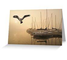 Osprey sailing club Sunrise Greeting Card
