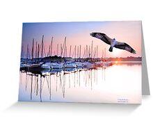 Osprey Sunrise Greeting Card