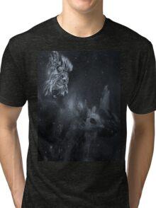 A lions dream Tri-blend T-Shirt