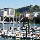 Yacht Harbour, Cherbourg in Normandy, France by GregoryE