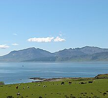 The Isle of Arran. by Lilian Marshall