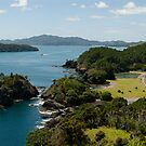 Motuarohia Bay of Islands by Frank Kletschkus