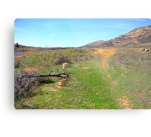 Trail to the Mount Metal Print