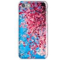 Color Drama III iPhone Case/Skin
