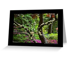 Planting Fields Arboretum State Historic Park - Upper Brookville, New York Greeting Card