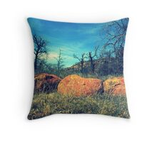 A Boulder View Throw Pillow