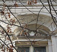 Library Window by Stephanie Fay