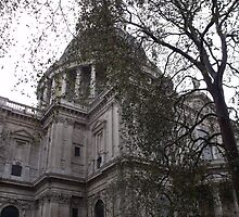 St Paul's Cathedral by Stephanie Fay