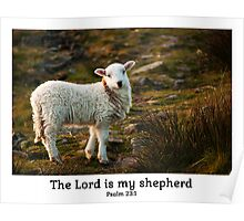 Lord Is My Shepherd (Caption) Psalm 23 Poster