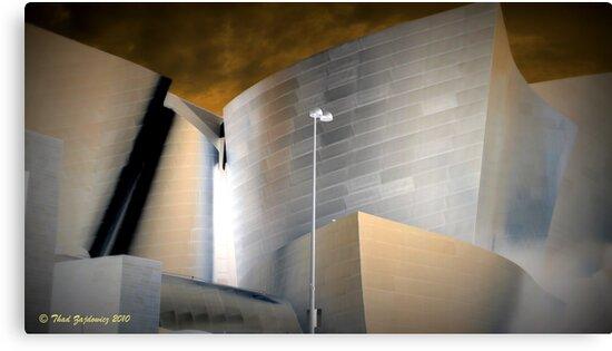 Walt Disney Concert Hall by Thad Zajdowicz