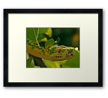 Garden of Eden Part Four Framed Print