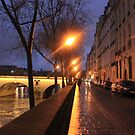 Streetlit Seine by BlackhawkRogue