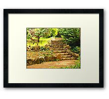 the scale Framed Print