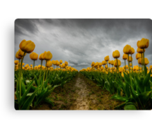 Chance of Rain Canvas Print