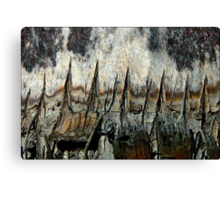 After the Volcano Canvas Print