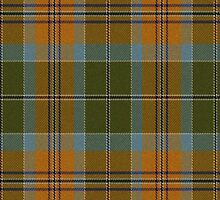 02661 Cumberland County, North Carolina E-fficial Fashion Tartan Fabric Print Iphone Case by Detnecs2013
