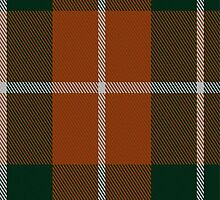 02662 Dunoon Irish Tartan Fabric Print Iphone Case by Detnecs2013