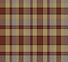 02673 Rockland County, New York E-fficial Fashion Tartan Fabric Print Iphone Case by Detnecs2013