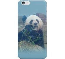 Panda Eating iPhone Case/Skin